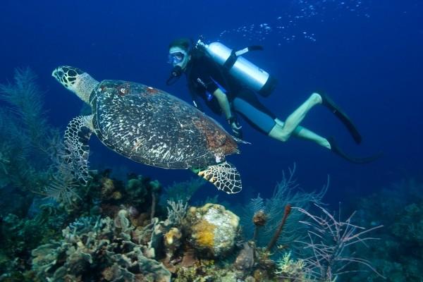 Boracay-island-diving-600x400